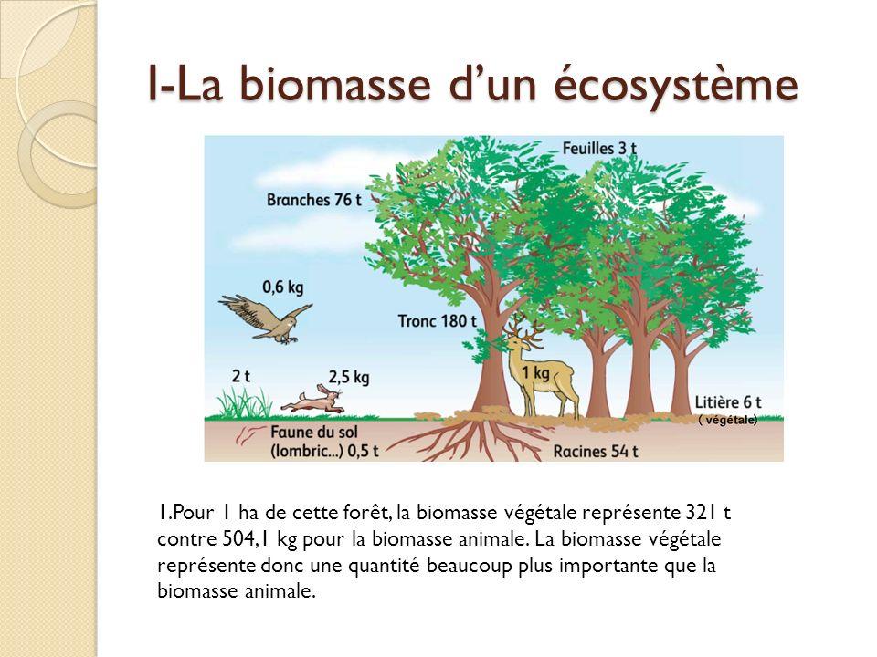 I-La biomasse d'un écosystème
