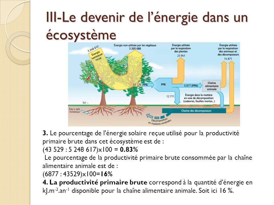 III-Le devenir de l'énergie dans un écosystème
