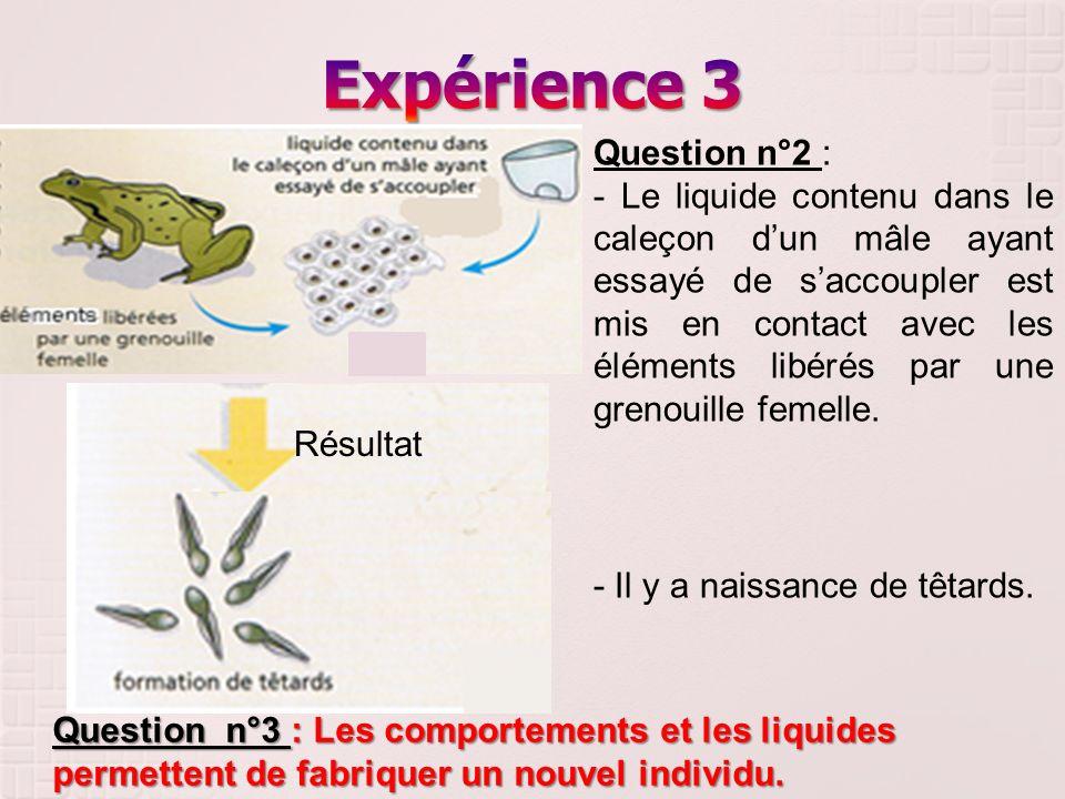 Expérience 3 Question n°2 :