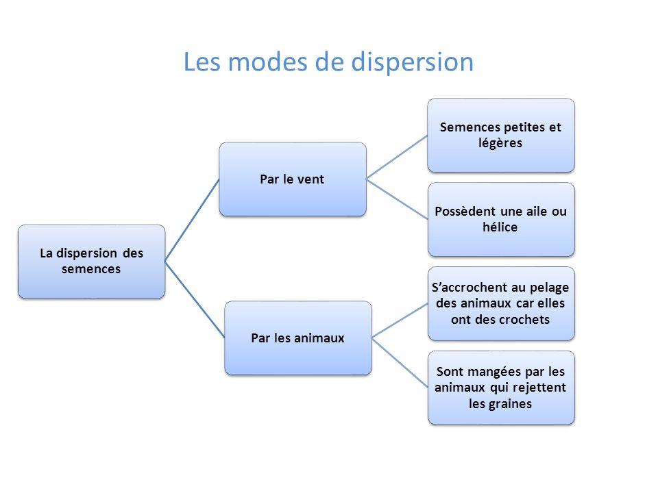Les modes de dispersion