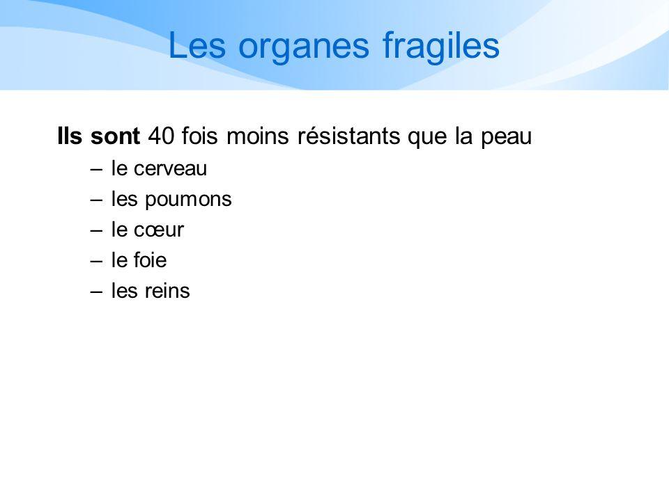 Les organes fragiles Ils sont 40 fois moins résistants que la peau