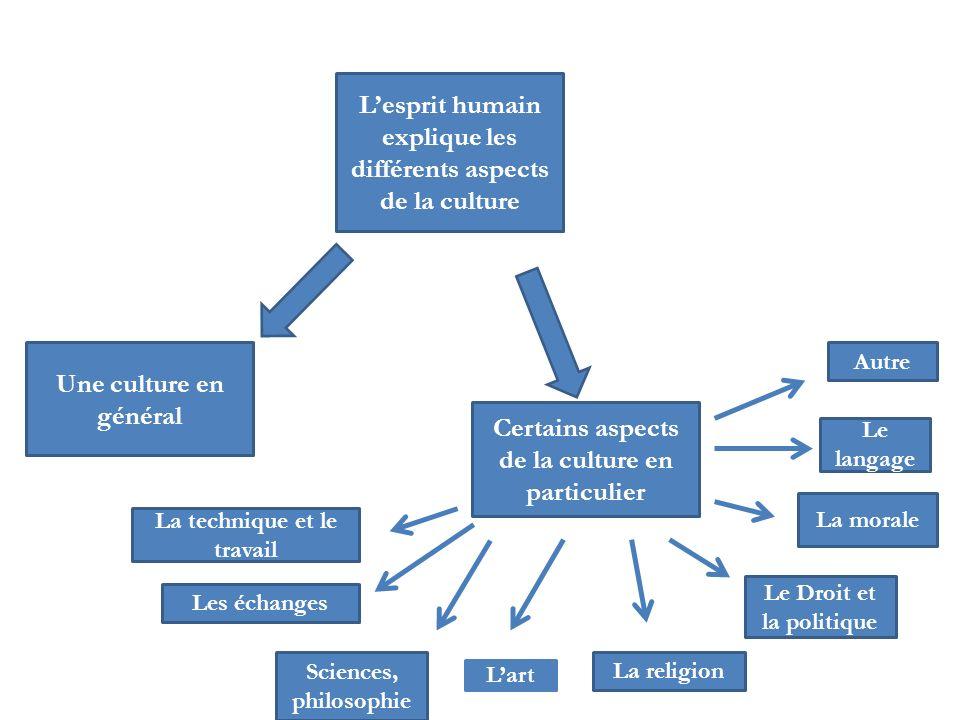 L'esprit humain explique les différents aspects de la culture
