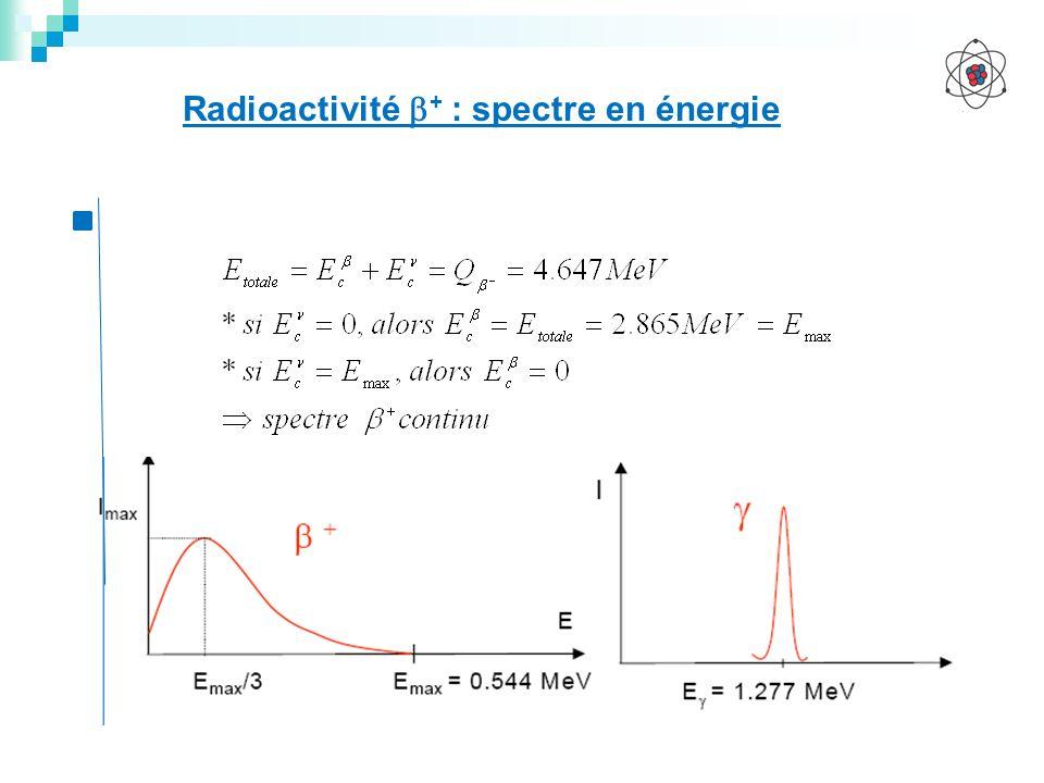 Radioactivité + : spectre en énergie