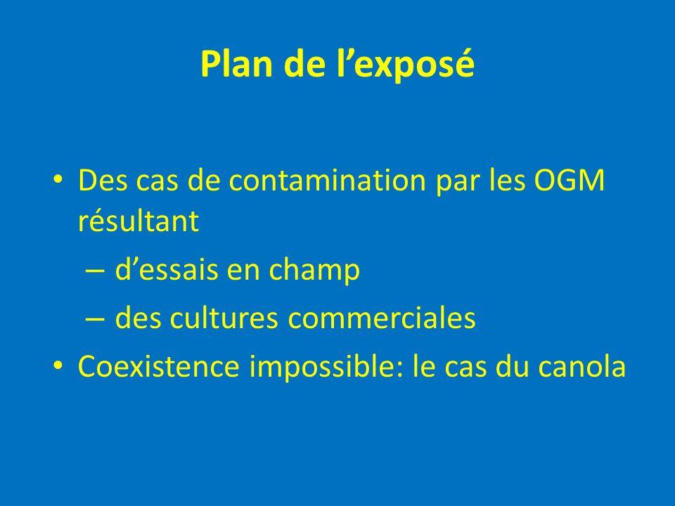 Plan de l'exposé Des cas de contamination par les OGM résultant