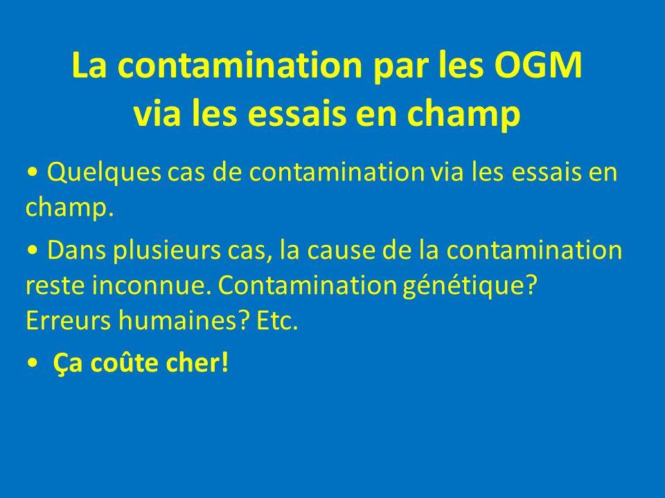 La contamination par les OGM via les essais en champ