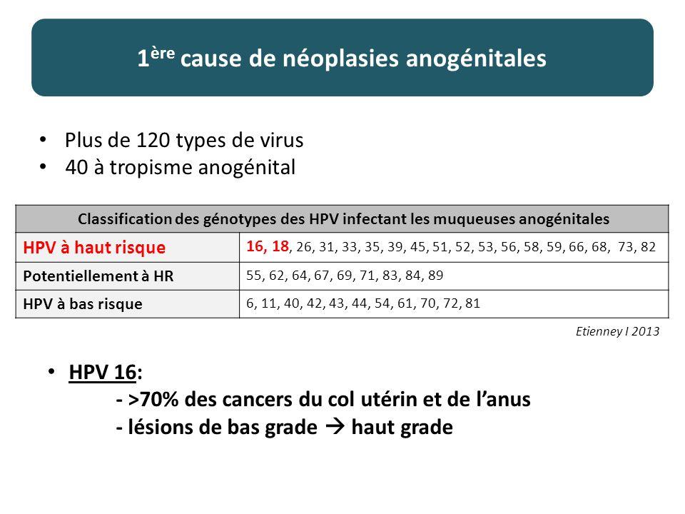 1ère cause de néoplasies anogénitales