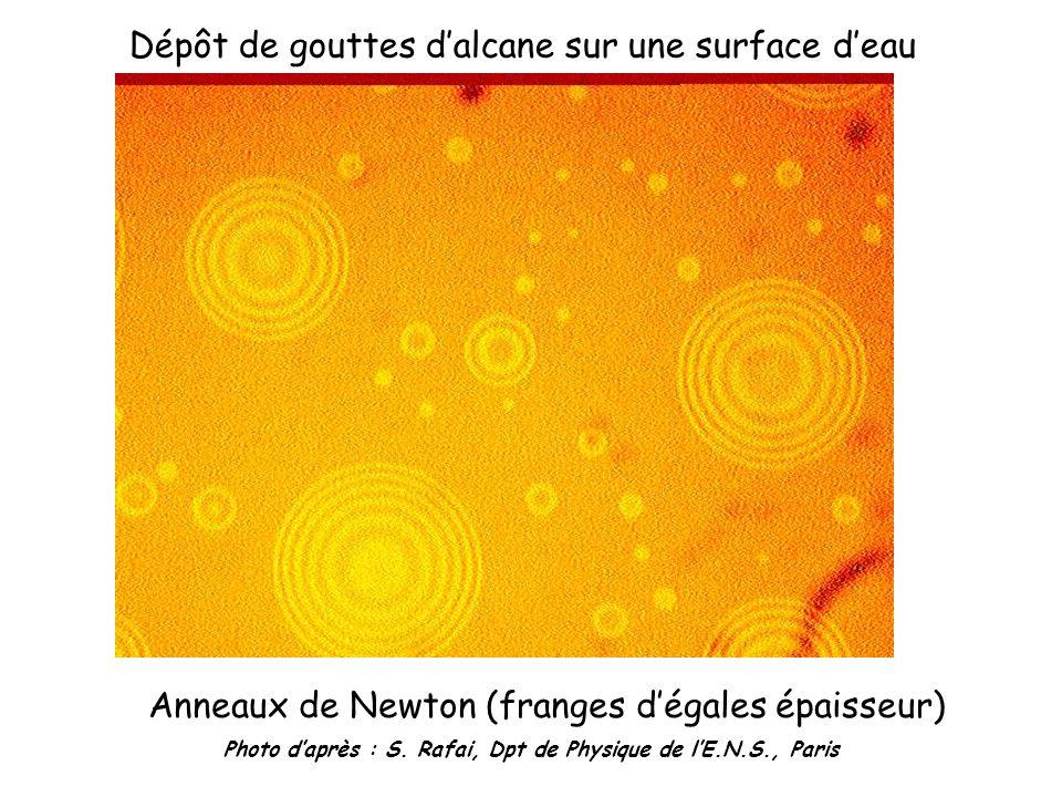 Photo d'après : S. Rafai, Dpt de Physique de l'E.N.S., Paris