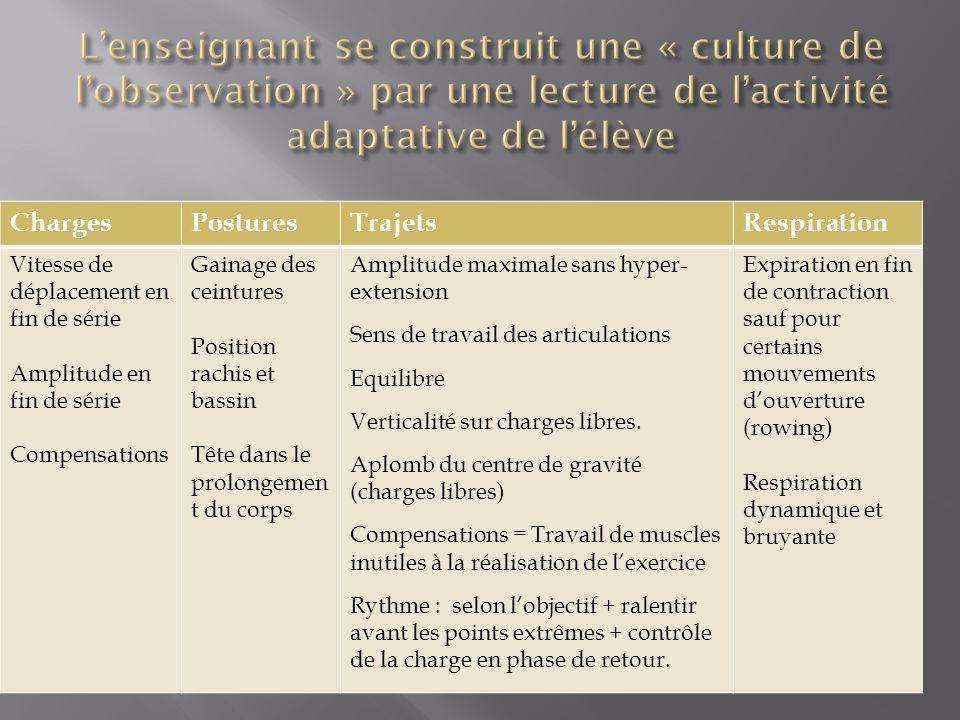 L'enseignant se construit une « culture de l'observation » par une lecture de l'activité adaptative de l'élève