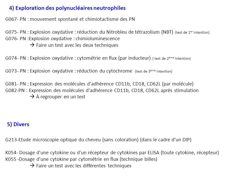 4) Exploration des polynucléaires neutrophiles