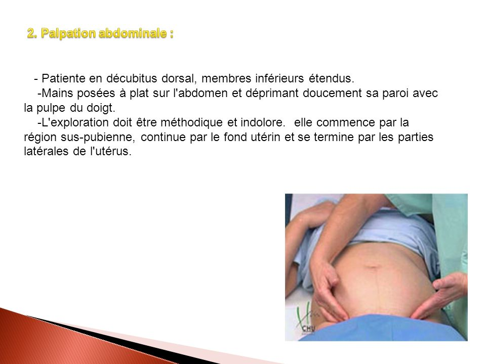 2. Palpation abdominale :