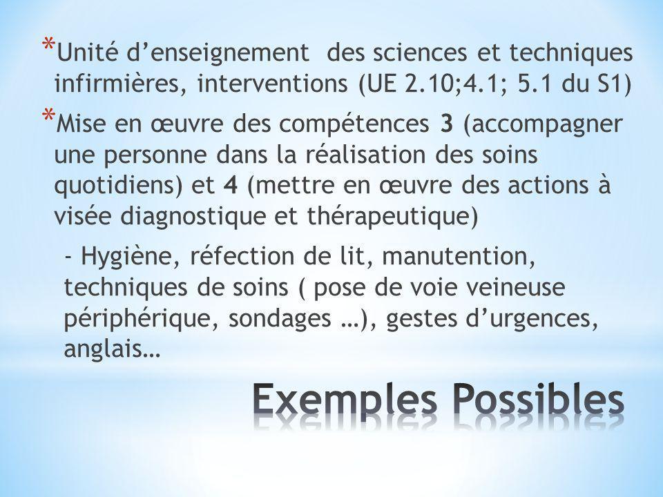 Unité d'enseignement des sciences et techniques infirmières, interventions (UE 2.10;4.1; 5.1 du S1)