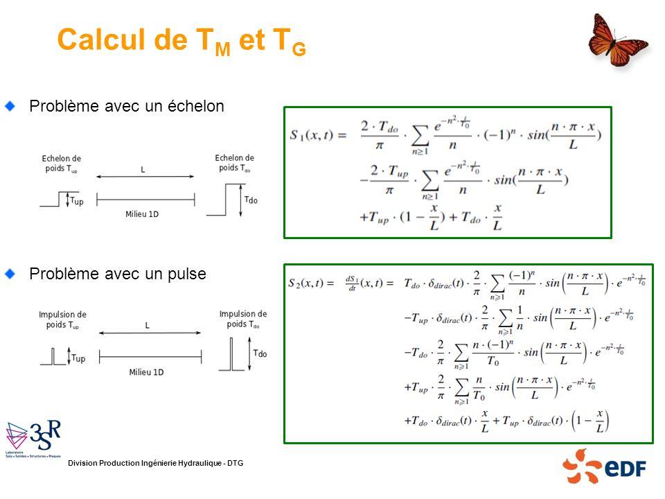 Calcul de TM et TG Problème avec un échelon Problème avec un pulse