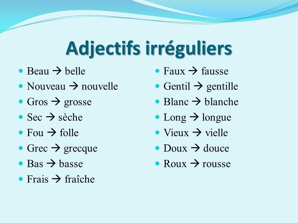 Adjectifs irréguliers