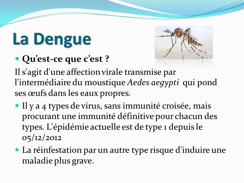 La Dengue Qu'est-ce que c'est
