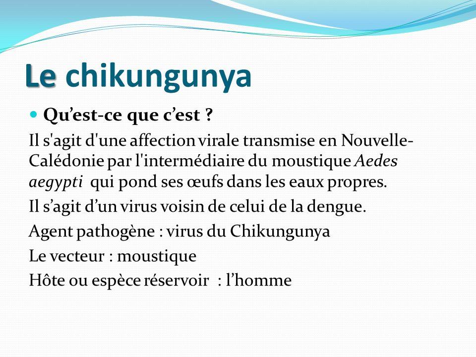 Le chikungunya Qu'est-ce que c'est