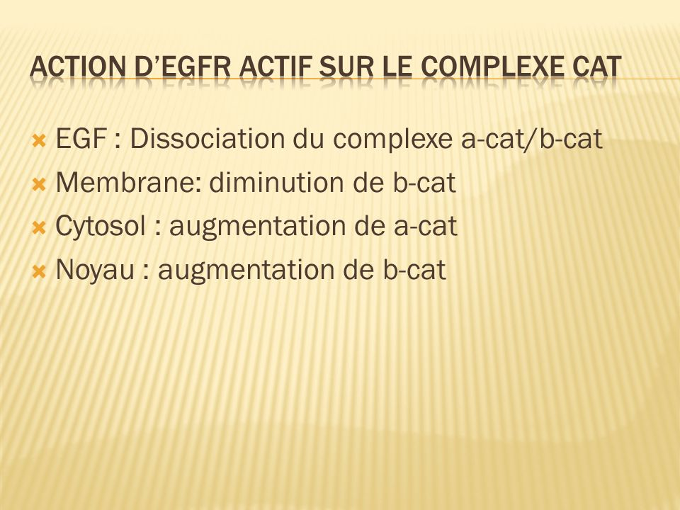 Action d'EGFR actif sur le complexe cat