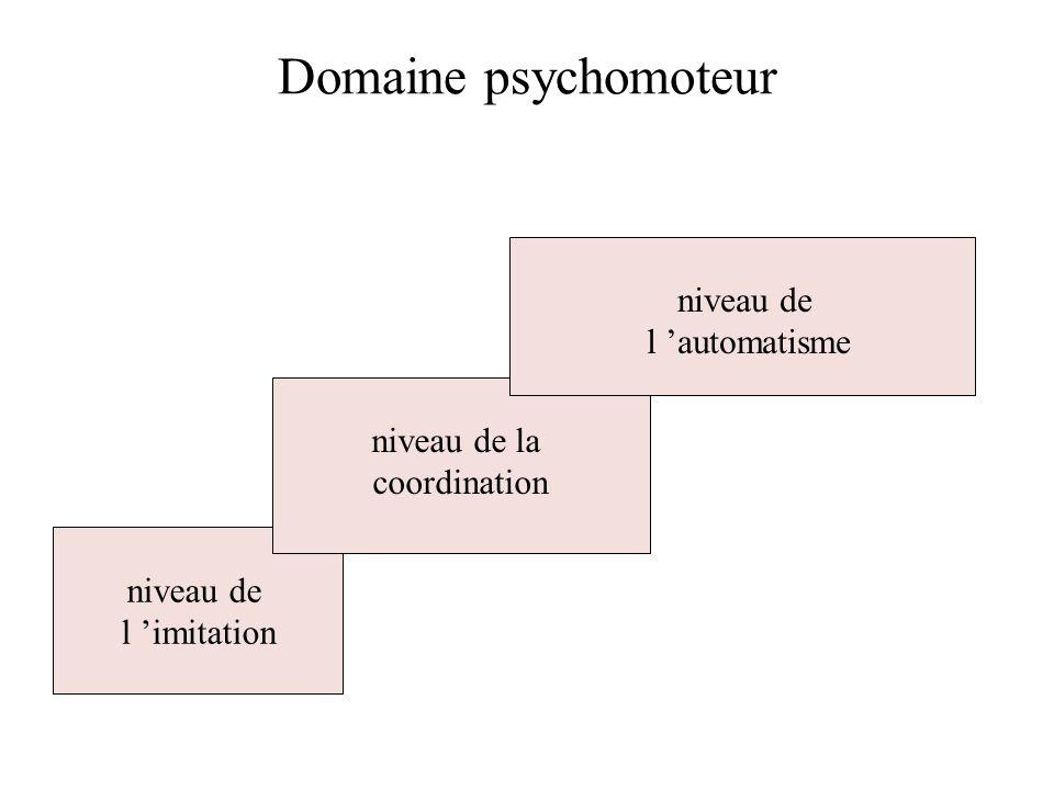 Domaine psychomoteur niveau de l 'automatisme niveau de la