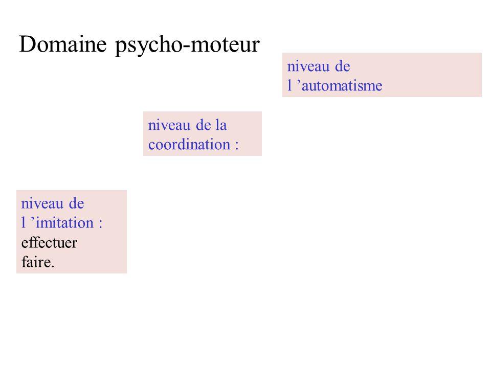 Domaine psycho-moteur