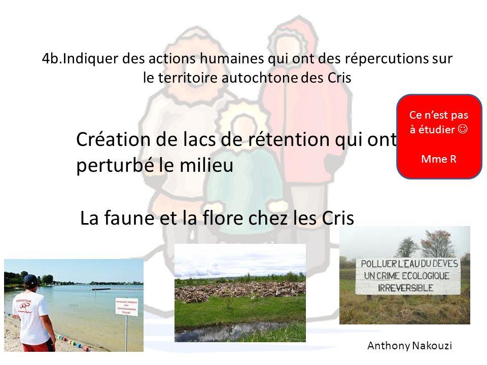 Création de lacs de rétention qui ont perturbé le milieu
