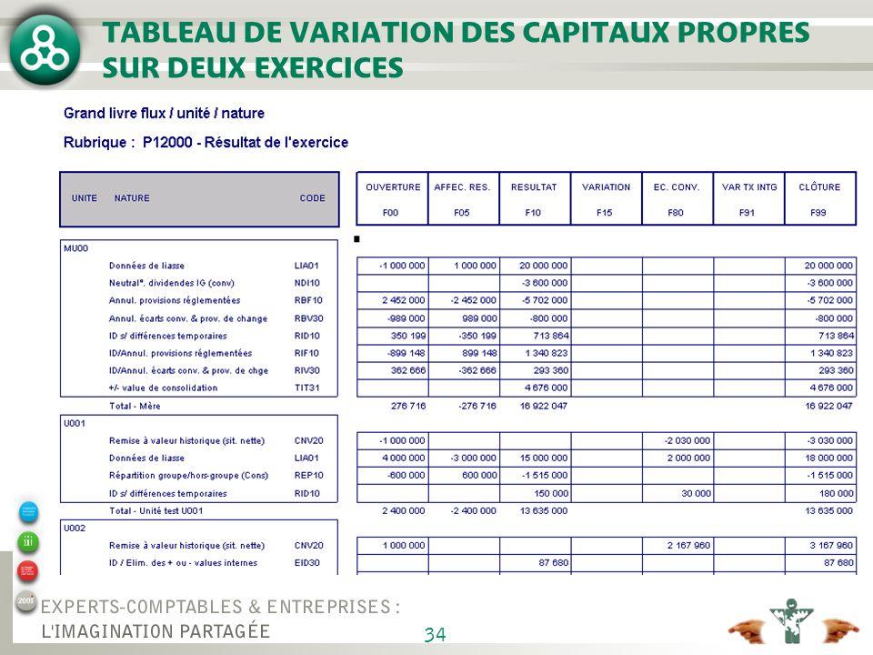 ETABLISSEMENT DE COMPTES PROFORMA EN CAS DE RESTRUCTURATION MAJEURE