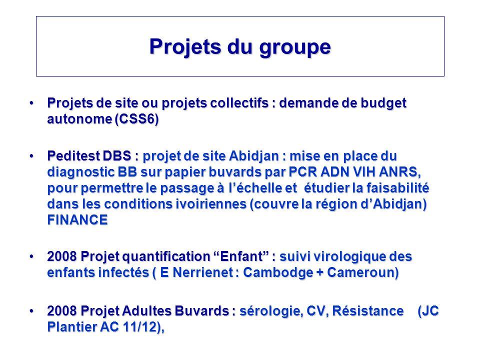 Projets du groupe Projets de site ou projets collectifs : demande de budget autonome (CSS6)