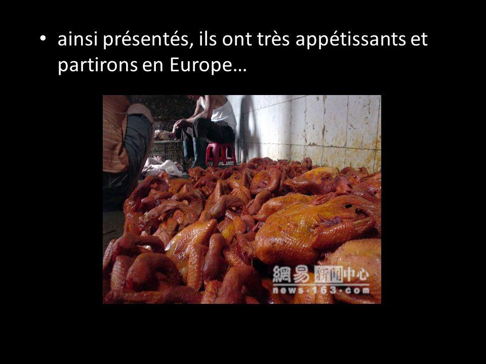 ainsi présentés, ils ont très appétissants et partirons en Europe…