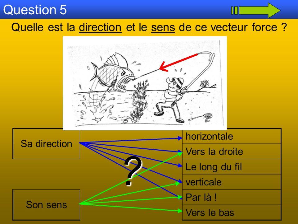 Quelle est la direction et le sens de ce vecteur force