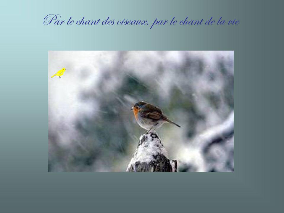 Par le chant des oiseaux, par le chant de la vie