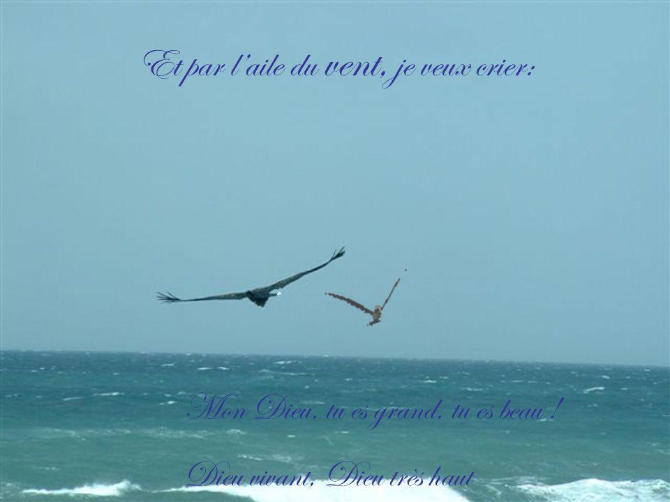 Et par l'aile du vent, je veux crier: