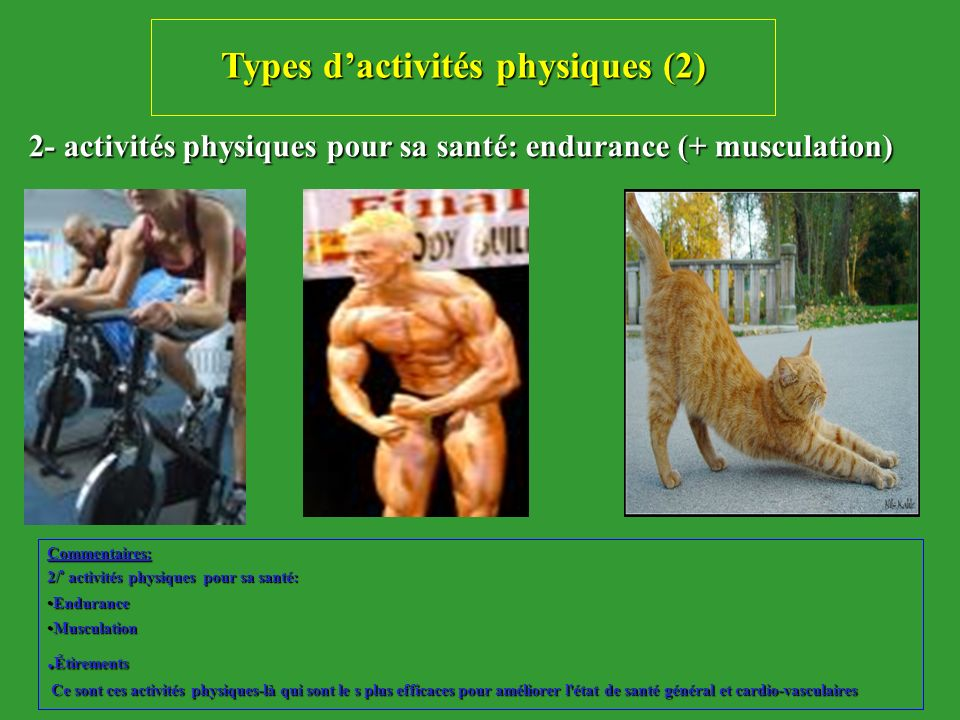 Types d'activités physiques (2)