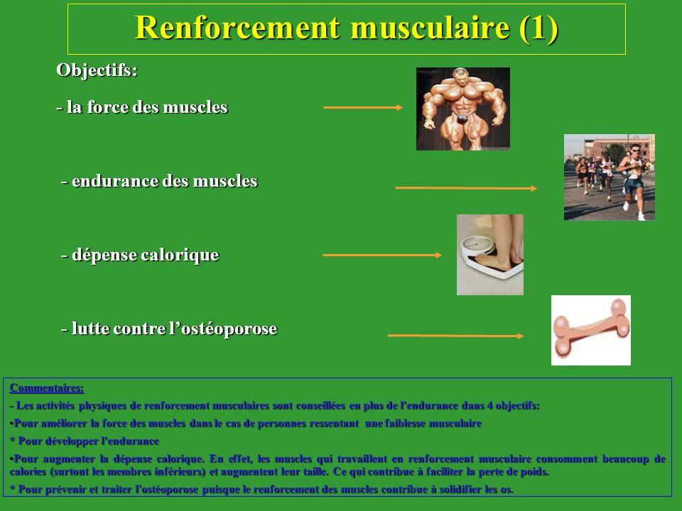 Renforcement musculaire (1)