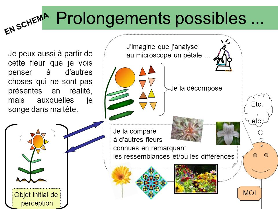 Prolongements possibles ...