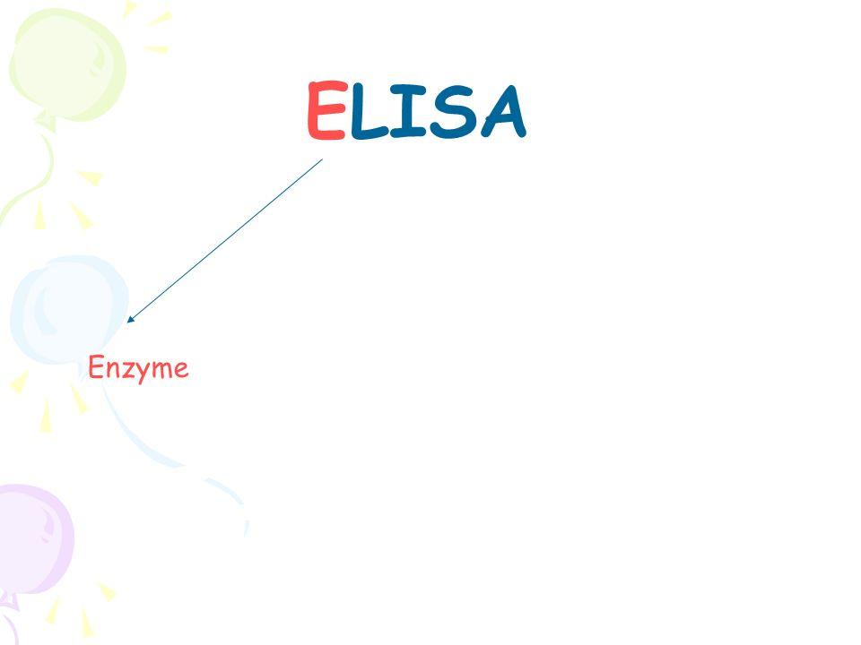 ELISA Enzyme