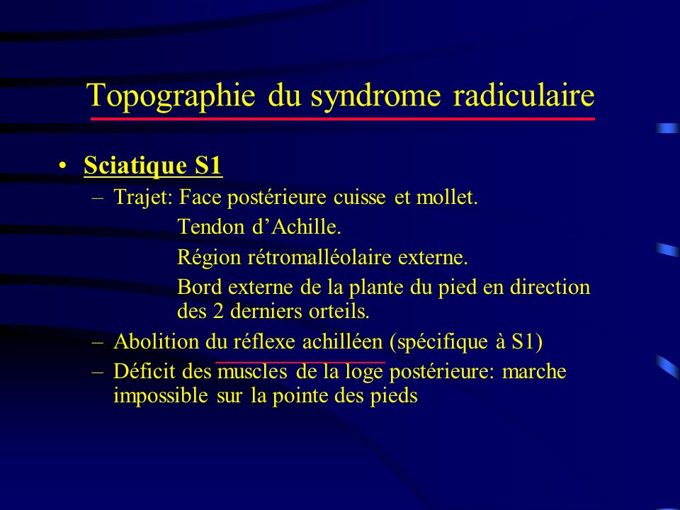 Topographie du syndrome radiculaire