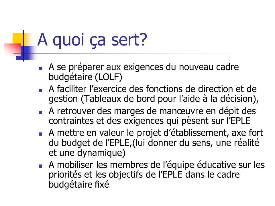 A quoi ça sert A se préparer aux exigences du nouveau cadre budgétaire (LOLF)