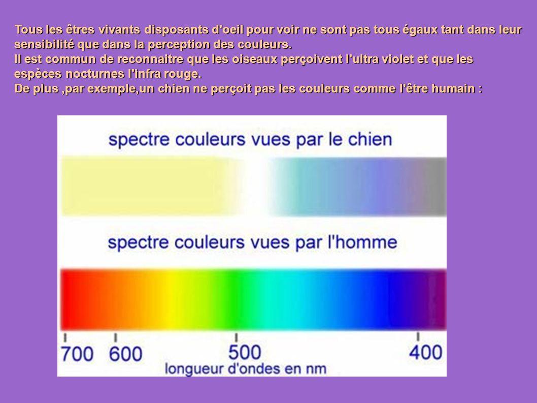 Tous les êtres vivants disposants d oeil pour voir ne sont pas tous égaux tant dans leur sensibilité que dans la perception des couleurs.