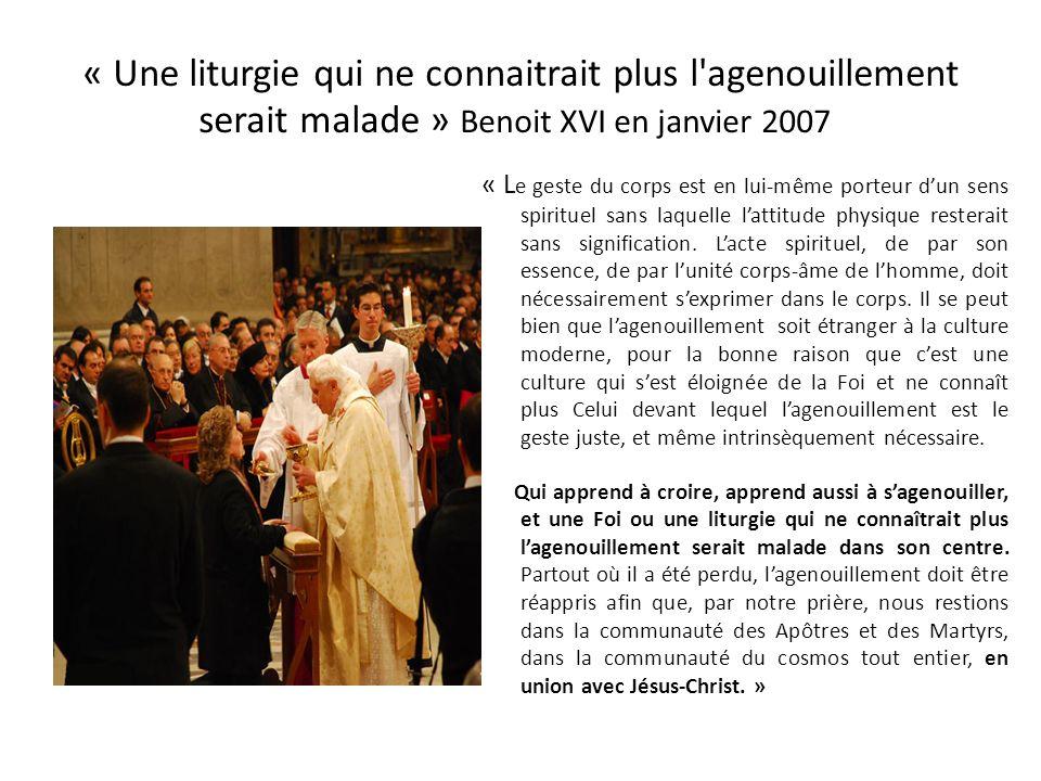 « Une liturgie qui ne connaitrait plus l agenouillement serait malade » Benoit XVI en janvier 2007