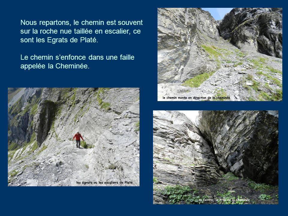 Nous repartons, le chemin est souvent sur la roche nue taillée en escalier, ce sont les Egrats de Platé.