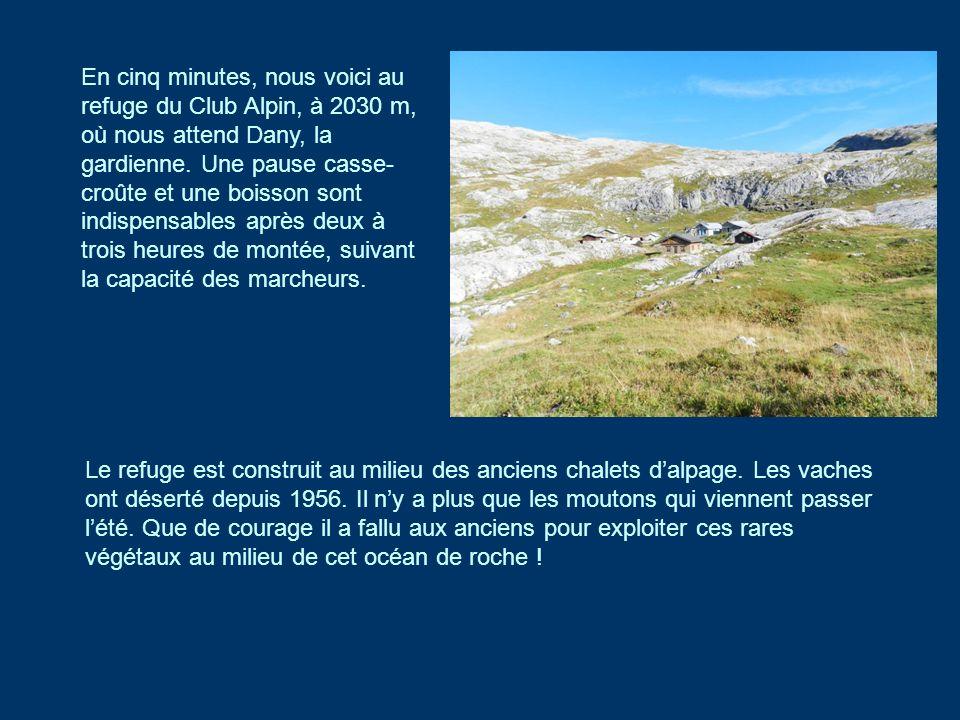 En cinq minutes, nous voici au refuge du Club Alpin, à 2030 m, où nous attend Dany, la gardienne. Une pause casse-croûte et une boisson sont indispensables après deux à trois heures de montée, suivant la capacité des marcheurs.