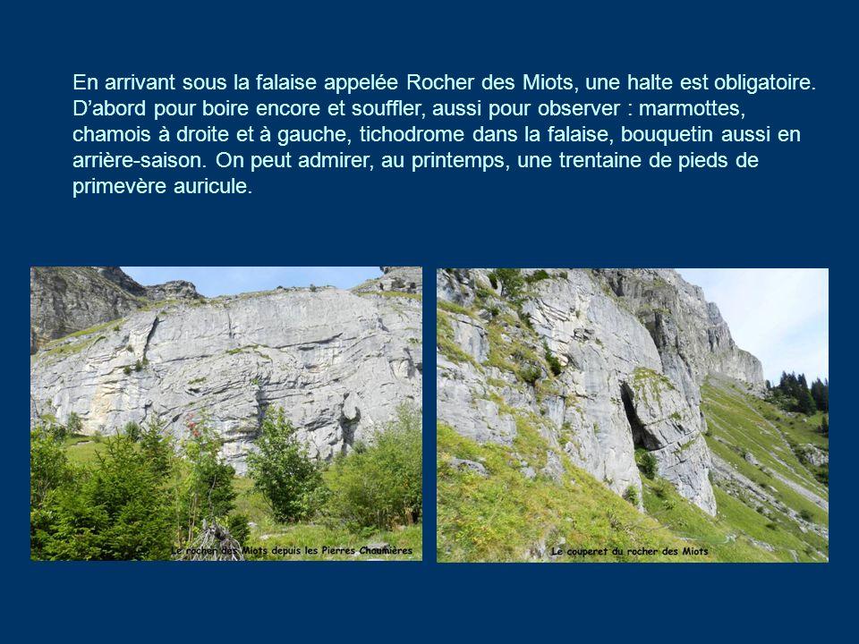 En arrivant sous la falaise appelée Rocher des Miots, une halte est obligatoire.