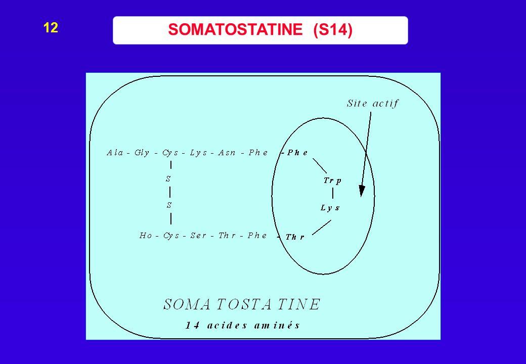 12 SOMATOSTATINE (S14)