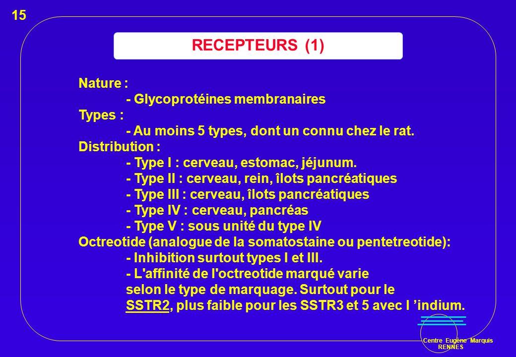RECEPTEURS (1) 15 Nature : - Glycoprotéines membranaires Types :