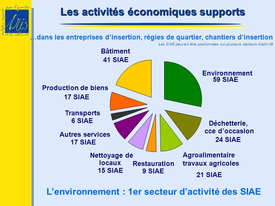 L'environnement : 1er secteur d'activité des SIAE