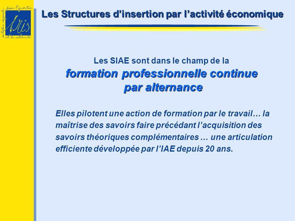 Les Structures d'insertion par l'activité économique