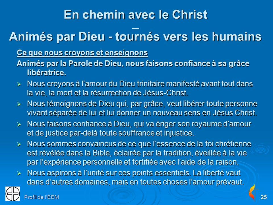 En chemin avec le Christ __ Animés par Dieu - tournés vers les humains