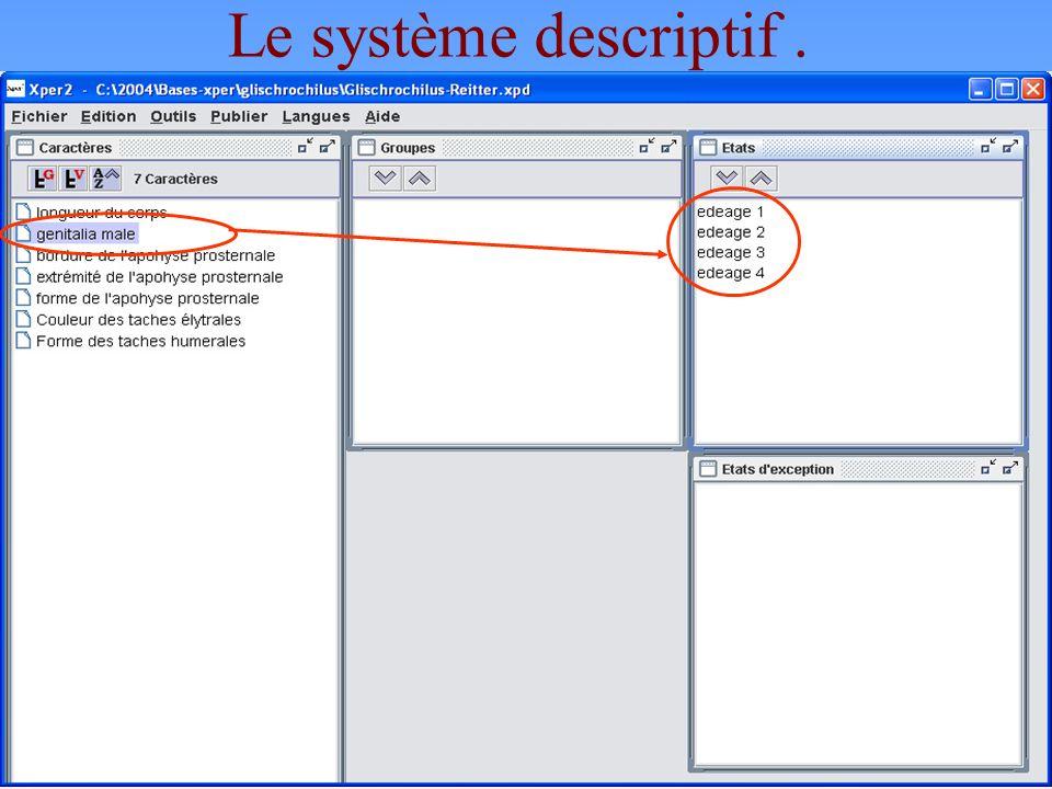 Le système descriptif .