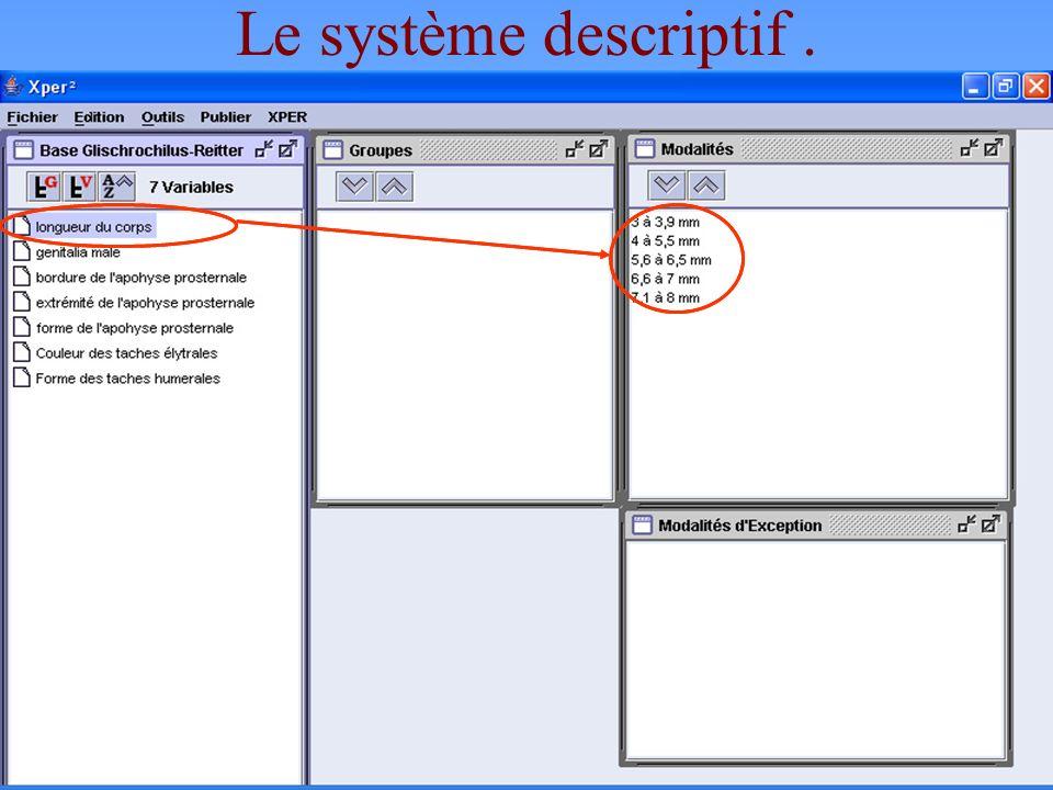 Le système descriptif . Les éléments servant à décrire