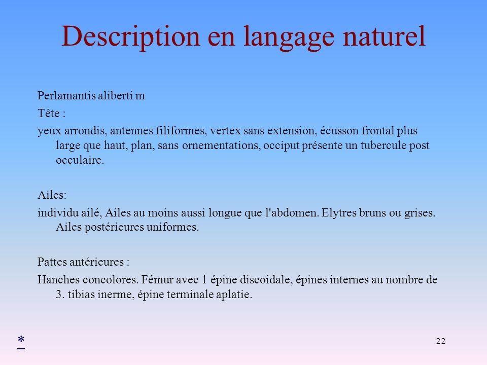 Description en langage naturel