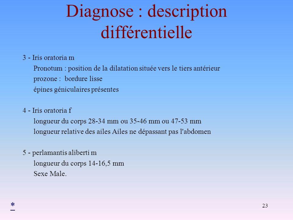 Diagnose : description différentielle