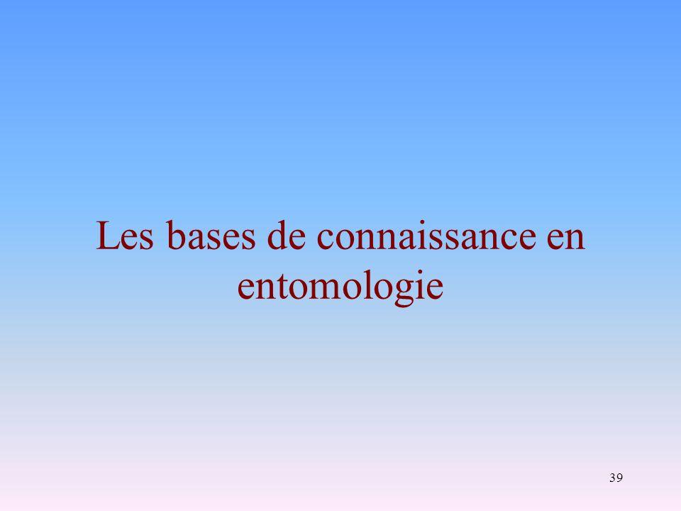 Les bases de connaissance en entomologie